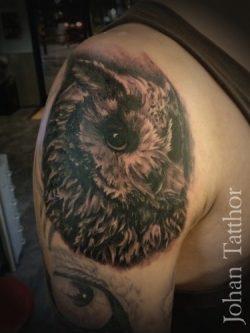 Owl Shoulder Tattoo – Johan Schouten